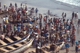 africa;african;africans;ethnic;people;person;persons;tradition;traditional;culture;cultural;cultures;indigenous;native;stall;stalls;market;markets;commerce;crowd-;busy;shopping;buying;market-day;weekly-market;fish;fishing;fishermen;fisher;fishers;fisherman;fish-market;beach;beaches;coast;fresh;sea;ocean-atlantic;ghana;ghanain;african;west-africa;africa;cape-coast