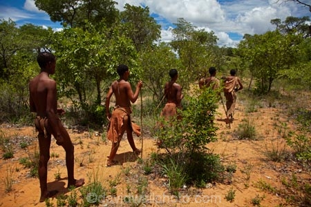 Africa;African;African-bush;bush;Bushman;Bushman-Living-Museum;Bushmanland;Bushmen;cultural;cultural-exchange;culture;forager-society;Grashoek-Living-Museum;Grashoek-village;hunter_gatherer;Hunting-and-gathering;Ju-Hoansi_San-Living-Museum;JuHoansi;JuHoansi_San-people;Living-Museum;Living-Museum-of-the-Ju-Hoansi_San;Living-Museum-of-the-JuHoansi_San;Living-Museums;Namibia;Otjozondjupa-District;Otjozondjupa-Region;people;person;San;San-Living-Museum;San-people;Southern-Africa;tradition;traditional;Traditional-Bushman-Culture;traditional-clothing;traditional-costume;traditional-dress;Traditional-San-Culture;tribe