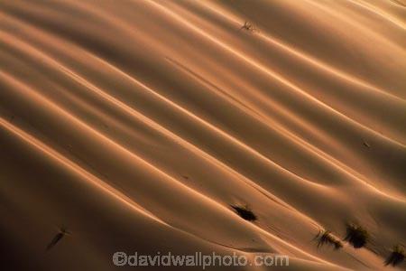 Africa;arid;big-dunes;desert;deserts;dry;dune;dunes;giant-dune;giant-dunes;giant-sand-dune;giant-sand-dunes;hot;huge-dunes;large-dunes;Namib-Desert;Namib-Naukluft-N.P.;Namib-Naukluft-National-Park;Namib-Naukluft-NP;Namib_Naukluft-N.P.;Namib_Naukluft-National-Park;Namib_Naukluft-NP;Namibia;national-park;national-parks;natural;remote;remoteness;reserve;reserves;sand;sand-dune;sand-dunes;sand-hill;sand-hills;sand_dune;sand_dunes;sand_hill;sand_hills;sanddune;sanddunes;sandhill;sandhills;sandy;Southern-Africa;wilderness