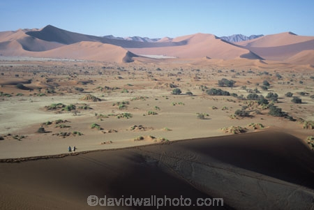 Sossusvlei;Namib_Naukluft-National-Park;national-park;Namibia;Southern-Africa;Africa;African;africa;arid;aridity;barren;barreness;desert;deserts;deserted;empty;wilderness;solitude;sand-dune;dunes;sand_dune;sand_dunes;people;person;natural;nature;hot;remote;landscape;landscapes;desolate;desolation;ecosystem;ecosystems;lone