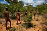 Africa;African;African-bush;bush;Bushman;Bushman-Living-Museum;Bushmanland;Bushmen;cultural;cultural-exchange;culture;forager-society;Grashoek-Living-Museum;Grashoek-village;hunter_gatherer;Hunting-and-gathering;Ju-Hoansi_San-Living-Museum;JuHoansi;JuHoansi_San-people;Living-Museum;Living-Museum-of-the-Ju-Hoansi_San;Living-Museum-of-the-JuHoansi_San;Living-Museums;Namibia;Otjozondjupa-District;Otjozondjupa-Region;people;person;San;San-Living-Museum;San-people;Southern-Africa;tradition;traditional;Traditional-Bushman-Culture;traditional-clothing;traditional-costume;traditional-dress;Traditional-San-Culture;tribe