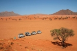 4wd;4wd-track;4wd-tracks;4wds;4wds;4x4;4x4-track;4x4-tracks;4x4s;4x4s;Africa;African;Bushlore;Bushlore-4x4;Bushlore-4x4-camper;camper;campers;desert;deserts;double-cab-hilux;four-by-four;four-by-fours;four-wheel-drive;four-wheel-drives;Hilux;hilux-camper;Hiluxes;Namib-Desert;Namib-Rand;Namib-Rand-Nature-Reserve;Namibia;NamibRand;NamibRand-Family-Hideout;NamibRand-Nature-Reserve;NamibRand-Reserve;NRNR;roof-tent;roof-tents;safari;safaris;sand;sandy;sandy-track;sandy-tracks;self-drive-route;self-drive-track;Southern-Africa;Southern-Namibia;sports-utility-vehicle;sports-utility-vehicles;suv;suvs;Toyota;toyota-camper;Toyota-Hilux;Toyota-Hiluxes;Toyotas;track;tracks;twin-cab-hilux;vehicle;vehicles;wilderness