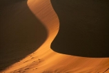 Africa;arid;big-dunes;curve;curves;desert;deserts;dry;dune;dunes;giant-dune;giant-dunes;giant-sand-dune;giant-sand-dunes;hot;huge-dunes;large-dunes;Namib-Desert;Namib-Naukluft-N.P.;Namib-Naukluft-National-Park;Namib-Naukluft-NP;Namib_Naukluft-N.P.;Namib_Naukluft-National-Park;Namib_Naukluft-NP;Namibia;national-park;national-parks;natural;orange-sand;remote;remoteness;reserve;reserves;sand;sand-dune;sand-dunes;sand-hill;sand-hills;sand_dune;sand_dunes;sand_hill;sand_hills;sanddune;sanddunes;sandhill;sandhills;sandy;Southern-Africa;wilderness