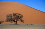 Dune-45;Namib_Naukluft-National-Park;National-Park;Namibia;Southern-Africa;Africa;african;plain;plains;landscape;sand;sand_dune;sand_dunes;sand-dune;sand-dunes;dune;dunes;sparse;empty;desert;deserted;africa;african;wilderness;sandy;vast;barren;desolate;desolation;solitude;solitary;dried;dry;outdoor;outdoors;outside;surface;surfaces;slope