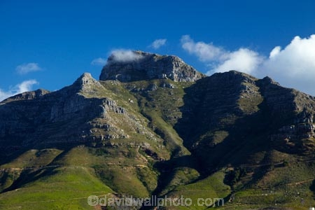 Africa;Cape-Town;Devils-Peak;Devils-Peak;national-parks;South-Africa;Southern-Africa;Table-Mountain-N.P.;Table-Mountain-National-Park;Table-Mountain-NP;Western-Cape;Western-Cape-Province