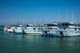 Asia;boat;boats;cruise-boat;cruise-boats;cruising;Ha-Long-Bay;Halong-Bay;North-Vietnam;Northern-Vietnam;Paradise-Luxury-Boat;Paradise-Luxury-Cruise-Boats;Qung-Ninh-Province;Quang-Ninh-Province;South-East-Asia;Southeast-Asia;tour-boat;tour-boats;tourism;tourist;tourist-boat;tourist-boats;tourists;travel-destination;UN-world-heritage-area;UN-world-heritage-site;UNESCO-World-Heritage-area;UNESCO-World-Heritage-Site;united-nations-world-heritage-area;united-nations-world-heritage-site;Vnh-H-Long;Vietnam;Vietnamese;world-heritage;world-heritage-area;world-heritage-areas;World-Heritage-Park;World-Heritage-site;World-Heritage-Sites