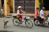 Asia;Asian;Asian-conical-hat;Asian-conical-hats;bicycle;bicycles;bike;bikes;Central-Sea-region;conical-hat;conical-hats;cycle;cycles;dog;dogs;female;females;Hi-An;Hoi-An;Hoi-An-Old-Town;Hoian;Indochina;ladies;lady;leaf-hat;leaf-hats;non-la;nón-lá;old-town;palm_leaf-conical-hat;people;person;push-bike;push-bikes;push_bike;push_bikes;pushbike;pushbikes;South-East-Asia;Southeast-Asia;street;street-scene;street-scenes;streets;UN-world-heritage-area;UN-world-heritage-site;UNESCO-World-Heritage-area;UNESCO-World-Heritage-Site;united-nations-world-heritage-area;united-nations-world-heritage-site;Vietnam;Vietnamese;Vietnamese-conical-hat;Vietnamese-conical-hats;Vietnamese-hat;Vietnamese-hats;Vietnamese-symbol;woman;women;world-heritage;world-heritage-area;world-heritage-areas;World-Heritage-Park;World-Heritage-site;World-Heritage-Sites