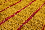 Asia;Asian;Can-Duoc;drying;incense;incense-stick;incense-sticks;Long-An-Province;Mekong-Delta;pattern;patterns;red;South-East-Asia;Southeast-Asia;Vietnam;Vietnamese;yellow