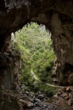australasia;Australia;australian;Blue-Mountains;cave;cave-interior;cavern;cavernous;caverns;caves;caving;Devils-Coach-House;Devils-Coach-House;formation;geology;grotto;grottos;Jenolan-Caves;limestone;n.s.w.;natural-archway;Nettle-Cave;Nettles-Cave;New-South-Wales;nsw;rock;rock-formation;Rock-Formations;stalactite;stalactites;UN-world-heritage-site;underground;UNESCO-World-Heritage-Site;united-nations-world-heritage-si;world-heritage;world-heritage-area;world-heritage-areas;World-Heritage-Park;world-heritage-site;World-Heritage-Sites