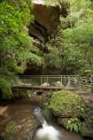 Australasia;Australia;Australian;Blue-Mountains;Blue-Mountains-N.P.;Blue-Mountains-National-Park;Blue-Mountains-NP;cascade;cascades;creek;creeks;falls;Leura;Leura-Cascades;Leura-Falls-Creek;N.S.W.;natural;nature;New-South-Wales;NSW;scene;scenic;stream;streams;UN-world-heritage-site;UNESCO-World-Heritage-Site;united-nations-world-heritage-site;water;water-fall;water-falls;waterfall;waterfalls;wet;world-heritage;world-heritage-area;world-heritage-areas;World-Heritage-Park;World-Heritage-site;World-Heritage-Sites
