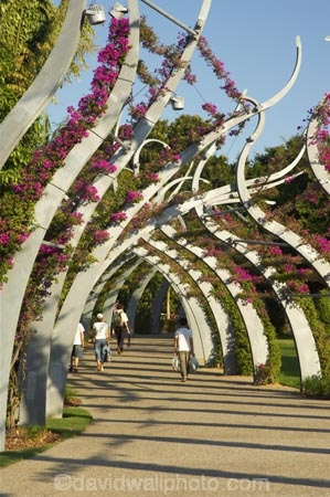 arbours;art;art-work;art-works;Australia;bourganvilia;bourganvillia;Brisbane;footpath;footpaths;Grand-Arbour;Mangrove-Boardwalk,-Botanic-Gar;path;pathway;pedestrian;plants;public-art;Queensland;South-Bank-Parklands;trellis;walkway