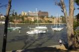australasia;Australia;australian;boat;boats;Brisbane;Brisbane-River;catarmaran;city-botanic-gardens;marina;marinas;moor;moored;mooring;Queensland;river;riverside-walk;yacht;Yachts