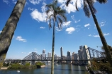 Australasia;Australia;Australian;Brisbane;Brisbane-River;palm;palm-tree;palm-trees;palms;Petrie-Bight;Qld;Queensland;river;rivers;Story-Bridge