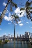 Australasia;Australia;Australian;Brisbane;Brisbane-River;c.b.d.;cbd;central-business-district;cities;city;cityscape;cityscapes;high-rise;high-rises;high_rise;high_rises;highrise;highrises;multi_storey;multi_storied;multistorey;multistoried;office;office-block;office-blocks;offices;palm;palm-tree;palm-trees;palms;Petrie-Bight;Qld;Queensland;river;rivers;sky-scraper;sky-scrapers;sky_scraper;sky_scrapers;skyscraper;skyscrapers;Story-Bridge;tower-block;tower-blocks