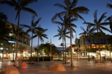 Australasian;Australia;Australian;Cairns;dusk;evening;nightfall;North-Queensland;palm;palm-tree;palm-trees;palms;Qld;Queensland;The-Esplanade;Tropical-North-Queensland;twilight