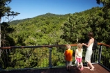 Aerial-Walkway;Australasian;Australia;Australian;beautiful;beauty;boardwalk;boy;boys;bush;Canopy-Tower;Canopy-Walkway;child;children;Daintree-Discovery-Centre;Daintree-Forest;Daintree-N.P.;Daintree-National-Park;Daintree-NP;Daintree-Rainforest;endemic;families;family;forest;forests;girl;girls;green;holiday;holidaying;holidays;native;native-bush;natural;nature;North-Queensland;Qld;Queensland;rain-forest;rain-forests;rain_forest;rain_forests;rainforest;rainforest-canopy;rainforests;scene;scenic;tourism;tourist;tourists;towers;travel;traveler;traveling;traveller;travelling;tree;trees;Tropcial-North-Queensland;tropical;tropical-rainforest;tropical-rainforests;tropical-vegetation;UNESCO-World-Heritage-Site;vacation;vacationers;vacationing;vacations;viewing-tower;walkway;Wiorld-Heritage-Site;wood;woods;World-Heritage-Area;World-Heritage-Park;World-Heritage-Site