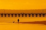 australasia;Australia;australian;coast;coastal;coastline;color;colors;colour;colours;dawn;dog;dogs;Fraser-Coast;Hervey-Bay;jetties;jetty;man;orange;people;person;persons;pier;piers;queensland;silhouette;silhouettes;sunrise;Urangan-pier;wharf;wharfs;wharves