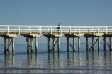australasia;Australia;australian;coast;coastal;coastline;Fraser-Coast;Hervey-Bay;jetties;jetty;people;person;pier;piers;queensland;Urangan-pier;wharf;wharfs;wharves