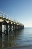 australasia;Australia;australian;coast;coastal;coastline;Fraser-Coast;Hervey-Bay;jetties;jetty;people;person;pier;piers;queensland;Urangan-pier;wharf;wharfs;wharves