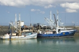 australasia;Australia;australian;boat;boat-harbour;boats;coast;coastal;fishing-boat;fishing-boats;Fraser-Coast;harbor;harbors;harbours;Hervey-Bay;jetties;jetty;marina;marinas;pier;piers;queensland;Urangan;wharfs;wharves