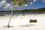 australasia;Australia;australian;beach;beaches;bush;children;forest;Fraser-Island;great-sandy-n.p.;great-sandy-national-park;great-sandy-np;islands;lake;Lake-Birrabeen;lakes;native-bush;people;perched-lake;perched-lakes;person;queensland;UN-world-heritage-site;united-nations-world-heritage-s;white-sand;white-sands;world-heritage;World-Heritage-site