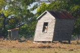 abandon;abandoned;agricultural;agriculture;australasia;australasian;Australia;australian;character;Derelict;discarded;farm;farming;farmland;farms;field;fields;forgotten;heritage;Hervey-Bay;historic;historical;horticulture;meadow;meadows;old;paddock;paddocks;pasture;pastures;queensland;relic;rural;rustic;shed;sheds