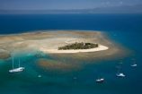 aerial;aerial-photo;aerial-photograph;aerial-photographs;aerial-photography;aerial-photos;aerial-view;aerial-views;aerials;australasian;Australia;australian;Barrier-Reef;boat;boats;cay;cays;coral-cay;coral-cays;coral-reef;coral-reefs;Coral-Sea;cruise;cruises;dive-site;dive-sites;Ecosystem;Environment;Great-Barrier-Reef;Great-Barrier-Reef-Marine-Park;holiday;holidaying;Holidays;launch;launches;Low-Is;Low-Is.;Low-Island;Low-Islands;Low-Isles;marine-environment;North-Queensland;ocean;oceans;Qld;queensland;reef;reefs;sand-cay;sand-cays;sea;seas;south-pacific;tasman-sea;tour-boat;tour-boats;tourism;tourist;tourist-boat;tourist-boats;travel;traveling;travelling;Tropcial-North-Queensland;tropical;tropical-reef;tropical-reefs;UNESCO-World-Heritage-Site;Vacation;vacationing;Vacations;water;Wave-Dancer;Wavedancer;world-heritage-area;World-Heritage-Park;world-heritage-site
