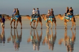 Australasian;Australia;Australian;beach;beaches;Broome;calm;camel;camel-train;camel-trains;camels;coast;coastal;coastline;Kimberley;Kimberley-Region;placid;quiet;reflection;reflections;sand;sandy;serene;shore;shoreline;smooth;still;The-Kimberley;tourism;tourist;tourist-attraction;tourist-attractions;tourists;tranquil;W.A.;WA;water;West-Australia;Western-Australia