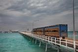 Australasian;Australia;Australian;Broome;Broome-Port;cattle-truck;cattle-trucks;Deep-Water-Jetty;dock;docks;jetties;jetty;juggernaut;juggernauts;Kimberley;Kimberley-Region;live-cattle-export;livestock-export;livestock-exports;lorries;lorry;pier;piers;Port-of-Broome;quay;quays;road;road-train;road-trains;road_train;road_trains;roads;roadtrain;roadtrains;The-Kimberley;transport;transportation;truck;trucks;vehicle;vehicles;W.A.;WA;waterside;West-Australia;Western-Australia;wharf;wharfes;wharves
