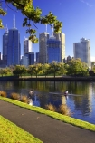 alexander-gardens;alexandra-gardens;australasian;Australia;australian;boat;boats;c.b.d.;cbd;central-business-district;cities;city;cityscape;cityscapes;high-rise;high-rises;high_rise;high_rises;highrise;highrises;Melbourne;multi_storey;multi_storied;multistorey;multistoried;oak;oak-tree;oak-trees;oaks;office;office-block;office-blocks;offices;reflection;reflections;river;rivers;row;rower;rowers;rowing;scull;sculler;scullers;sculling;single-skull;single-skuller;sky-scraper;sky-scrapers;sky_scraper;sky_scrapers;skyscraper;skyscrapers;tower-block;tower-blocks;Victoria;Yarra-River