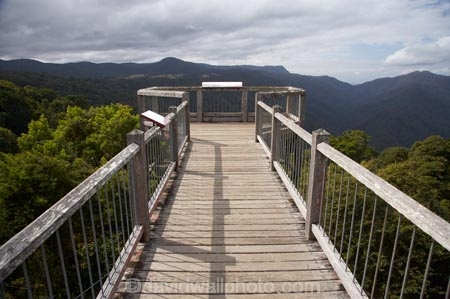 Australasian;Australia;Australian;Central-Eastern-Rainforest-Reserves;Dorrigo-N.P.;Dorrigo-National-Park;Dorrigo-NP;Dorrigo-Rainforest;Dorrigo-Rainforest-Centre;Dorrigo-Skywalk;Gondwana-Rainforests-of-Australia;lookout;lookouts;Mid-North-Coast;Mid-North-Coast-NSW;Mid-North-Nsw;Mid-Northern-NSW;N.S.W.;New-South-Wales;NSW;platform;platforms;Skywalk;viewing-platform;viewing-platforms;Waterfall-Way;World-Heritage-Site