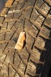 Australasia;Australia;Australian;Australian-Desert;Australian-Deserts;Australian-Outback;blowout;breakdown;broken-down;burst;damage;damaged;deflated;flat-tire;flat-tires;flat-tyre;flat-tyres;hazard;hazards;hole;holed;motoring;N.S.W.;New-South-Wales;NSW;Outback;Outback-Driving;Outback-Motoring;outback-travel;puncture;punctures;rock;rocks;ruin;ruined;tire;tires;travel;tyre;tyres
