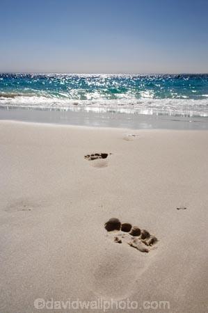 A.C.T.;ACT;Australasia;Australia;Australian-Capital-Territory;beach;beaches;Booderee-N.P.;Booderee-National-Park;Booderee-NP;coast;coastal;coastline;foot-print;foot-prints;footmark;footprint;footprints;Jervis-Bay;Jervis-Bay-Territory;Murrays-Beach;Murrays-Beach;N.S.W.;New-South-Wales;NSW;ocean;oceans;sand;sandy;sea;seas;shore;shoreline;South-New-South-Wales;Southern-New-South-Wales;toe-print;toe-prints