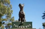 australasia;Australasian;Australia;australian;Dog-on-the-Tucker-Box;Dog-on-the-Tucker-Box-Statue;Dog-on-the-Tuckerbox;Dog-on-the-Tuckerbox-Statue;Gundagai;memorial;memorials;N.S.W.;New-South-Wales;NSW;South-New-South-Wales;South-West-Slopes;Southern-New-South-Wales;statue;statues