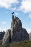 alpine;Australia;bird-birds;geological;geology;Kosciuszko-N.P.;Kosciuszko-National-Park;Kosciuszko-NP;Kosciuszko-Walk;mountains;N.S.W.;New-South-Wales;NSW;Rams-Head-Range;raven;ravens;rock;rock-formation;rock-formations;rock-outcrop;rock-outcrops;rock-tor;rock-torr;rock-torrs;rock-tors;rocks;rook;rooks;Snowy-Mountains;Snowy-Mountains-Drive;South-New-South-Wales;Southern-New-South-Wales;stone