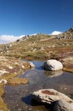 alpine;Australia;boulder;boulders;Kosciuszko-N.P.;Kosciuszko-National-Park;Kosciuszko-NP;Kosciuszko-Walk;mountain-stream;mountain-streams;mountains;N.S.W.;New-South-Wales;North-Rams-Head;NSW;pond;ponds;pool;pools;Rams-Head-Range;rock;rocks;rocky;Small-Mountain-Tarn;Snowy-Mountains;Snowy-Mountains-Drive;South-New-South-Wales;Southern-New-South-Wales