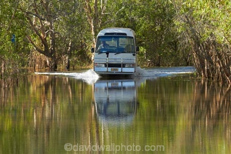 Australia;Australian;billabong;billabongs;bus;buses;calm;coach;coaches;flood-plain;flood-plains;flooded-road;flooded-roads;flooding;floodplain;floodplains;Gagadju;Gagudju-Dreaming;Kakadu;Kakadu-billabong;Kakadu-billabongs;Kakadu-flood-plain;Kakadu-flood-plains;Kakadu-floodplain;Kakadu-floodplains;Kakadu-N.P.;Kakadu-National-Park;Kakadu-NP;Kakadu-wetland;Kakadu-wetlands;N.T.;national-parks;Northern-Territory;NT;placid;quiet;reflection;reflections;road-conditions;serene;smooth;still;Top-End;tour-bus;tour-buses;touring;tourism;tourist;tourist-bus;tourist-buses;tourist-coach;tourist-coaches;tourists;tranquil;UN-world-heritage-area;UN-world-heritage-site;UNESCO-World-Heritage-area;UNESCO-World-Heritage-Site;united-nations-world-heritage-area;united-nations-world-heritage-site;water;wet-season;wetland;wetlands;world-heritage;world-heritage-area;world-heritage-areas;World-Heritage-Park;World-Heritage-site;World-Heritage-Sites;Yellow-Water;Yellow-Water-Billabong;Yellow-Water-Cruises-bus;Yellow-Water-Wetland;Yellow-Water-Wetlands