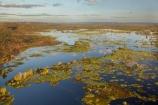 aerial;aerial-photo;aerial-photograph;aerial-photographs;aerial-photography;aerial-photos;aerial-view;aerial-views;aerials;Australia;Australian;billabong;billabongs;flood-plain;flood-plains;floodplain;floodplains;Gagadju;Kakadu;Kakadu-billabong;Kakadu-billabongs;Kakadu-flood-plain;Kakadu-flood-plains;Kakadu-floodplain;Kakadu-floodplains;Kakadu-N.P.;Kakadu-National-Park;Kakadu-NP;Kakadu-wetland;Kakadu-wetlands;Magela-Creek;Magela-Creek-System;Magela-Creek-Wetlands;Magela-Wetlands;N.T.;Northern-Territory;NT;rainy-season;seasonal;Top-End;UN-world-heritage-area;UN-world-heritage-site;UNESCO-World-Heritage-area;UNESCO-World-Heritage-Site;united-nations-world-heritage-area;united-nations-world-heritage-site;wet-season;wetland;wetlands;wilderness;wilderness-area;wilderness-areas;world-heritage;world-heritage-area;world-heritage-areas;World-Heritage-Park;World-Heritage-site;World-Heritage-Sites