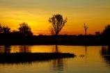 Australia;Australian;billabong;billabongs;calm;dusk;evening;flood-plain;flood-plains;floodplain;floodplains;Gagadju;Gagudju-Dreaming;Kakadu;Kakadu-billabong;Kakadu-billabongs;Kakadu-flood-plain;Kakadu-flood-plains;Kakadu-floodplain;Kakadu-floodplains;Kakadu-N.P.;Kakadu-National-Park;Kakadu-NP;Kakadu-wetland;Kakadu-wetlands;N.T.;nightfall;Northern-Territory;NT;orange;placid;quiet;reflection;reflections;serene;sky;smooth;still;sunset;sunsets;Top-End;tranquil;twilight;UN-world-heritage-area;UN-world-heritage-site;UNESCO-World-Heritage-area;UNESCO-World-Heritage-Site;united-nations-world-heritage-area;united-nations-world-heritage-site;water;wetland;wetlands;wilderness;wilderness-area;wilderness-areas;world-heritage;world-heritage-area;world-heritage-areas;World-Heritage-Park;World-Heritage-site;World-Heritage-Sites;Yellow-Water;Yellow-Water-Billabong;Yellow-Water-Wetland;Yellow-Water-Wetlands