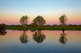 Australia;Australian;billabong;billabongs;calm;dusk;evening;flood-plain;flood-plains;floodplain;floodplains;Gagadju;Gagudju-Dreaming;Kakadu;Kakadu-billabong;Kakadu-billabongs;Kakadu-flood-plain;Kakadu-flood-plains;Kakadu-floodplain;Kakadu-floodplains;Kakadu-N.P.;Kakadu-National-Park;Kakadu-NP;Kakadu-wetland;Kakadu-wetlands;N.T.;nightfall;Northern-Territory;NT;PINK;placid;quiet;reflection;reflections;serene;sky;smooth;still;sunset;sunsets;Top-End;tranquil;twilight;UN-world-heritage-area;UN-world-heritage-site;UNESCO-World-Heritage-area;UNESCO-World-Heritage-Site;united-nations-world-heritage-area;united-nations-world-heritage-site;water;wetland;wetlands;wilderness;wilderness-area;wilderness-areas;world-heritage;world-heritage-area;world-heritage-areas;World-Heritage-Park;World-Heritage-site;World-Heritage-Sites;Yellow-Water;Yellow-Water-Billabong;Yellow-Water-Wetland;Yellow-Water-Wetlands