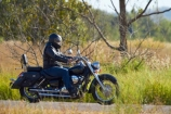 Adelaide-River;Australasia;Australia;bike;biker;bikers;bikes;harley-davidson;Harley_Davidson;highway;highways;motorbike;motorbiker;motorbikers;motorbikes;motorcycle;motorcycles;motorcyclist;motorcyclists;N.T.;Northern-Territory;NT;road;roads;Stuart-Highway;Top-End