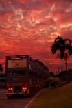 Australasia;Australia;cattle-truck;cattle-trucks;dusk;Emerald-Springs-Road-House;Emerald-Springs-Roadhouse;evening;highway;highways;juggernaut;juggernauts;lorries;lorry;N.T.;nightfall;Northern-Territory;NT;orange;palm;palm-tree;palm-trees;palms;road;road-train;road-trains;road_train;road_trains;roads;roadtrain;roadtrains;sky;Stuart-Highway;sunset;sunsets;Top-End;transport;transportation;truck;trucks;twilight;vehicle;vehicles