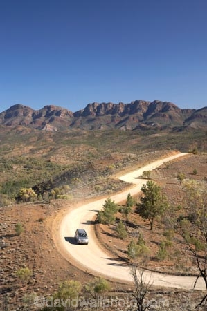 4wd;4wds;4wds;4x4;4x4s;4x4s;Australasian;Australia;Australian;Australian-Outback;back-country;backcountry;backwoods;Bunyeroo-Gorge-Road;Bunyeroo-Valley;Bunyeroo-Valley-Road;countryside;dusty;Flinders-Ranges;Flinders-Ranges-N.P.;Flinders-Ranges-National-Park;Flinders-Ranges-NP;four-by-four;four-by-fours;four-wheel-drive;four-wheel-drives;gravel-road;gravel-roads;metal-road;metal-roads;metalled-road;metalled-roads;national-park;national-parks;Nissan-X_trail;Nissan-Xtrail;Outback;Outback-Travel;razorback;Razorback-Ridge;Razorback-Ridge,-Bunyeroo-Valley,-and-Wilpena-Pound,-Flinders-Ra;remote;remoteness;road;roads;rural;S.A.;SA;South-Australia;South-Flinders-Ranges;suv;suvs;vehicle;vehicles;Wilpena-Pound