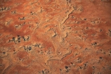 aerial;aerial-photo;aerial-photography;aerial-photos;aerial-view;aerial-views;aerials;arid;Australasia;Australasian;Australia;Australian;Australian-Desert;Australian-Deserts;Australian-Outback;back-country;backcountry;backwoods;burnt;country;countryside;Desert;deserts;dry;geographic;geography;ochre;Oodnadatta-Track;Outback;oxidised;pattern;patterns;red-centre;remote;remoteness;rock;rural;S.A.;SA;sand;sand-pattern;sand-patterns;scorched;South-Australia;wilderness;William-Creek