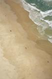 aerial;aerials;australasia;Australia;beach;beaches;coast;coastal;coastline;coolum;holiday;holidays;island;islands;oceans;pacific-ocean;Queensland;sand;sandy;shore;shoreline;Sunshine-Coast;surf;tasman-sea;tourism;travel;vacation;vacations;waves