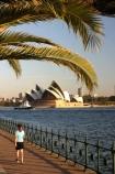australia;sydney;cove;harbour;harbours;harbors;harbor;icon;icons;australian;landmark;landmarks;palm;palms;footpath;sidewalk;fence;rail;railing;opera-house;opera;house