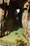 Australasian;Australia;Australian;bluff;bluffs;cave;cavern;caverns;caves;caving;cliff;cliffs;coast;coastal;coastline;coastlines;coasts;foreshore;geological;geology;grotto;grottos;Island-of-Tasmania;Maingon-Bay;natural-feature;natural-features;ocean;Remarkable-Cave;rock;rock-arch;rock-arches;rock-formation;rock-formations;rocks;scenic;sea;shore;shoreline;shorelines;shores;Southern-Tasmania;State-of-Tasmania;stone;Tas;Tasman-Peninsula;Tasmania;water