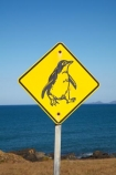 Australasian;Australia;Australian;Bass-Strait;Island-of-Tasmania;North-Western-Tasmania;North-WestTasmania;Northern-Tasmania;Northwestern-Tasmania;NorthwestTasmania;penguiin;penguins;Penquin-Sign;Penquin-Signs;Penquin-Warning-Sign;road-sign;road-signs;sign;signs;Stanley;Stanley-Peninsula;State-of-Tasmania;Tas;Tasmania;The-North;warning-sign;warning-signs;wildlife;wildlife-sign;wildlife-signs