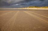 Australasia;Australasian;Australia;Australian;beach;beaches;black-cloud;black-clouds;black-sky;cloud;cloudy;coast;coastal;coastline;dark-cloud;dark-clouds;dark-sky;gray-cloud;gray-clouds;gray-sky;grey-cloud;grey-clouds;grey-sky;Island-of-Tasmania;Ocean-Beach;rain-cloud;rain-clouds;ripple;ripples;sand;sand-ripple;sand-ripples;sandy;State-of-Tasmania;storm;storm-clouds;storms;stormy;Strahan;Tas;Tasmania;The-West;tire-print;tire-prints;tire-track;tire-tracks;tyre-prints;tyre-track;tyre-tracks;West-Tasmania;Western-Tasmania;wind-ripple;wind-ripples