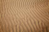 Australasia;Australasian;Australia;Australian;beach;beaches;coast;coastal;coastline;Island-of-Tasmania;Ocean-Beach;ripple;ripples;sand;sand-ripple;sand-ripples;sandy;State-of-Tasmania;Strahan;Tas;Tasmania;The-West;West-Tasmania;Western-Tasmania;wind-ripple;wind-ripples